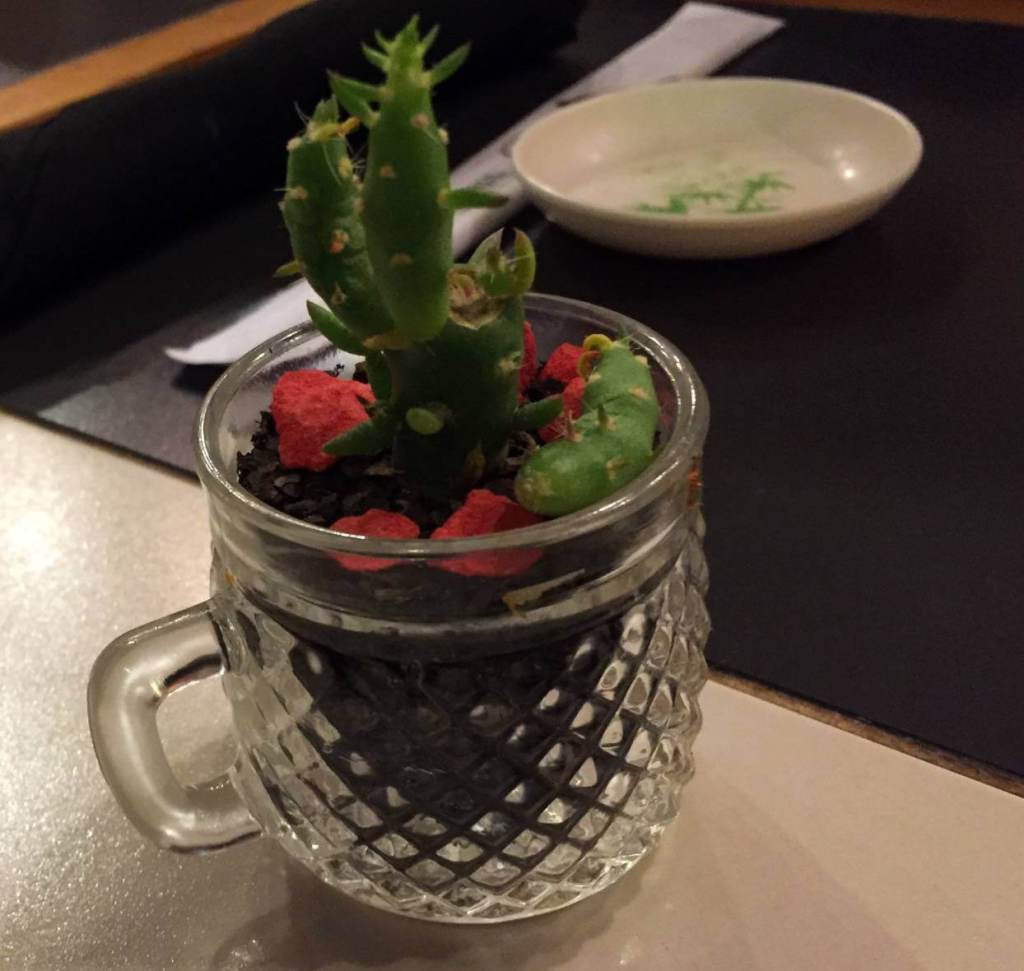 cacto do Restaurante Mizu com os3fominhas